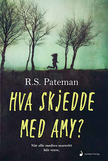 the second life of amy archer book jacket. norwegian edition.